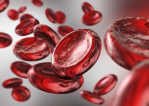 red blood cells. beautiful scientific background. 3d rendering.